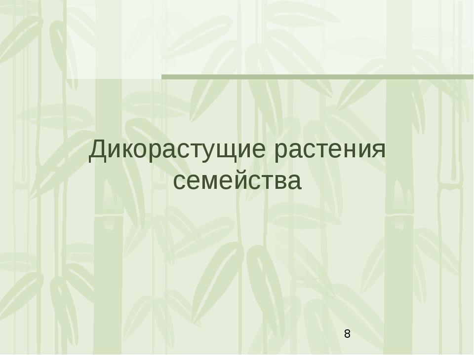 Дикорастущие растения семейства Яковлева Л.А.