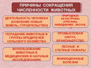 ПРИЧИНЫ СОКРАЩЕНИЯ ЧИСЛЕННОСТИ ЖИВОТНЫХ ДЕЯТЕЛЬНОСТЬ ЧЕЛОВЕКА (ОСВОЕНИЕ НОВЫХ