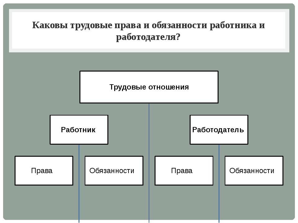 Каковы трудовые права и обязанности работника и работодателя?