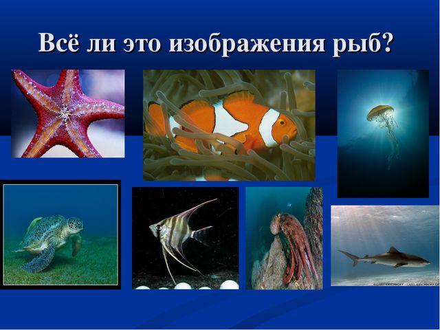 Всё ли это изображения рыб?