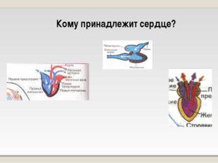 Кому принадлежит сердце?