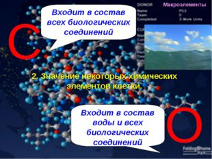 Входит в состав всех биологических соединений Входит в состав воды и всех био
