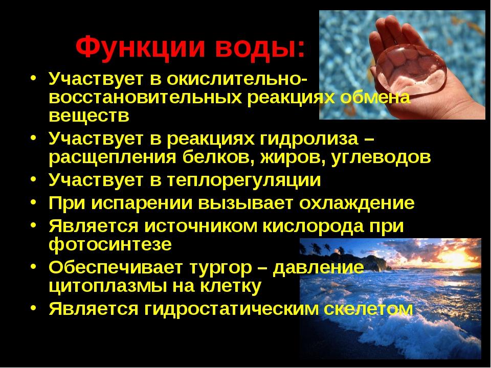 Функции воды: Участвует в окислительно-восстановительных реакциях обмена веще...