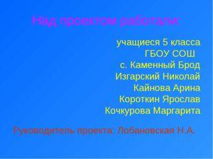 учащиеся 5 класса ГБОУ СОШ с. Каменный Брод Изгарский Николай Кайнова Арина К