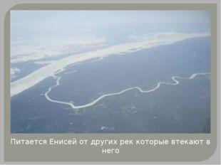 Питается Енисей от других рек которые втекают в него