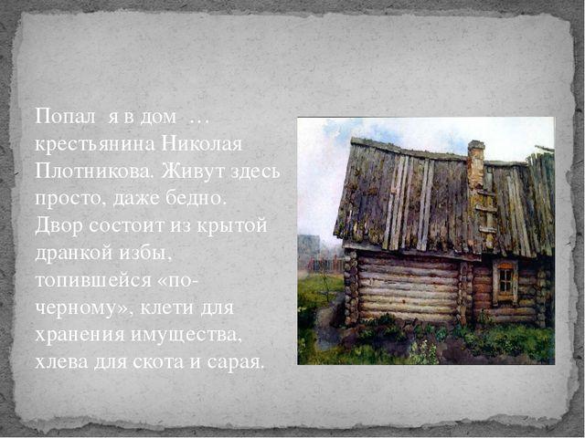 Попал я в дом … крестьянина Николая Плотникова. Живут здесь просто, даже бед...
