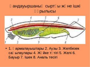 Қандауыршаның сыртқы және ішкі құрылысы 1. Қармалауыштары 2. Аузы 3. Желбезек
