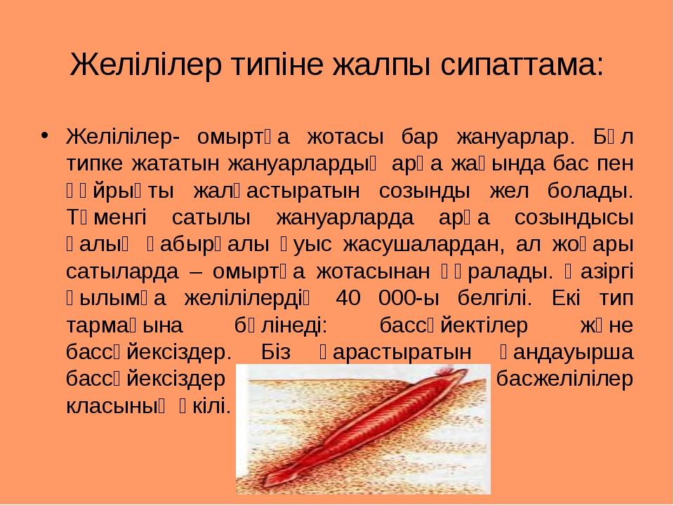 Желілілер типіне жалпы сипаттама: Желілілер- омыртқа жотасы бар жануарлар. Бұ...