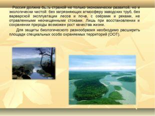 Россия должна быть страной не только экономически развитой, но и экологическ