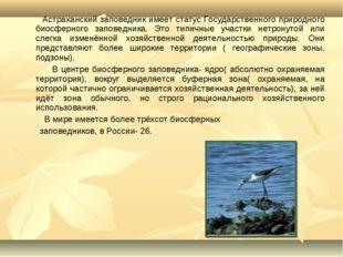 Астраханский заповедник имеет статус Государственного природного биосферного