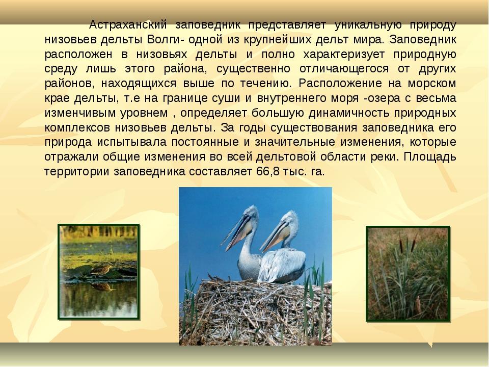 Астраханский заповедник представляет уникальную природу низовьев дельты Волг...