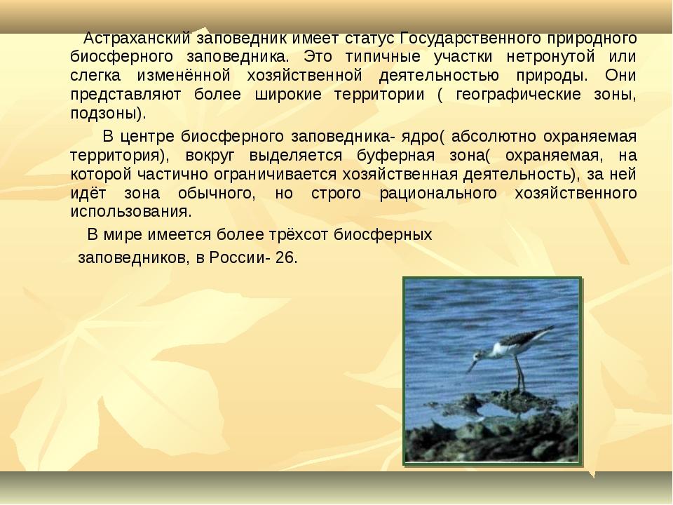 Астраханский заповедник имеет статус Государственного природного биосферного...