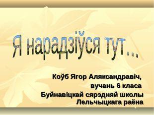 Коўб Ягор Аляксандравіч, вучань 6 класа Буйнавіцкай сярэдняй школы Лельчыцкаг