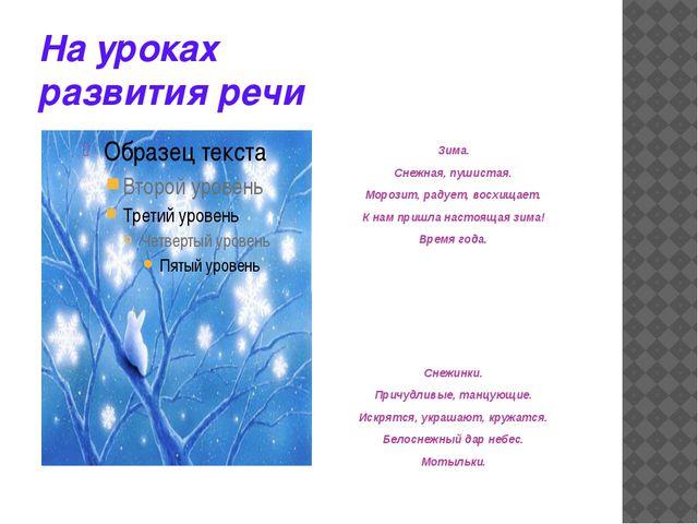 На уроках развития речи  Зима. Снежная, пушистая. Морозит, радует, восхищ...