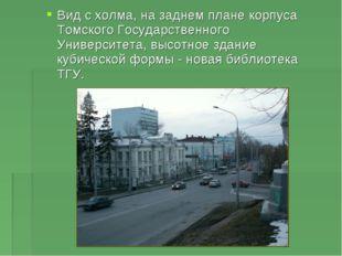 Вид с холма, на заднем плане корпуса Томского Государственного Университета,