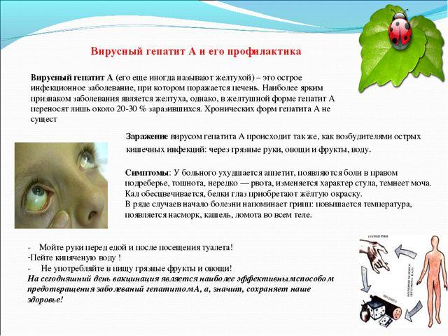 Вирусный гепатит А и его профилактика Вирусный гепатит А (его еще иногда назы...