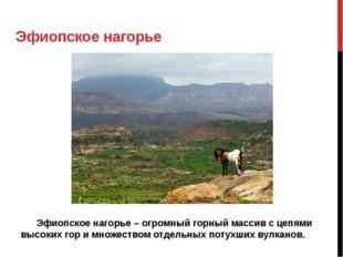 Эфиопское нагорье Эфиопское нагорье – огромный горный массив с цепями высо