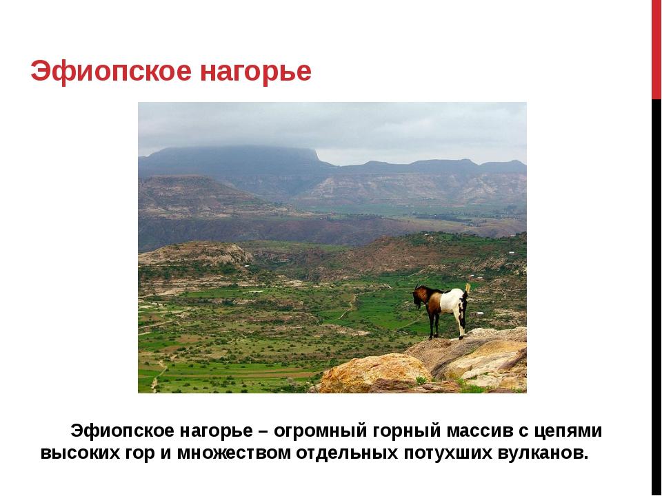 Эфиопское нагорье Эфиопское нагорье – огромный горный массив с цепями высо...