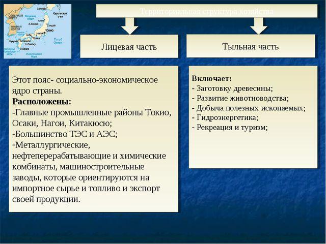 Территориальная структура хозяйства Этот пояс- социально-экономическое ядро с...