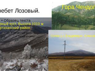 Хребет Лозовый. Чёрный куст. Высота 1010 м Партизанский район. Гора Чендолаз.