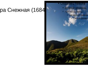 Гора Снежная (1684 м).