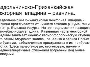 Раздольнинско-Приханкайская межгорная впадина – равнина. Раздольнинско-Прих