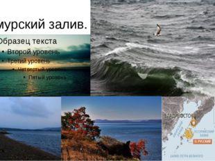 Амурский залив.