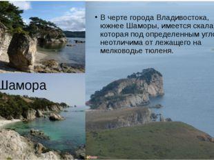 . Шамора В черте города Владивостока, южнее Шаморы, имеется скала, которая по