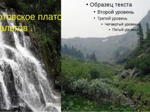 Шкотовское плато базальтов.