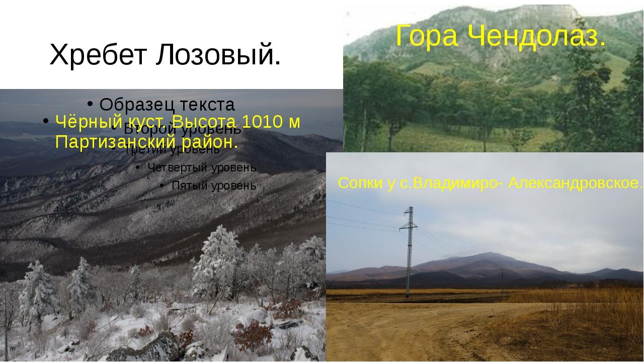 Хребет Лозовый. Чёрный куст. Высота 1010 м Партизанский район. Гора Чендолаз....