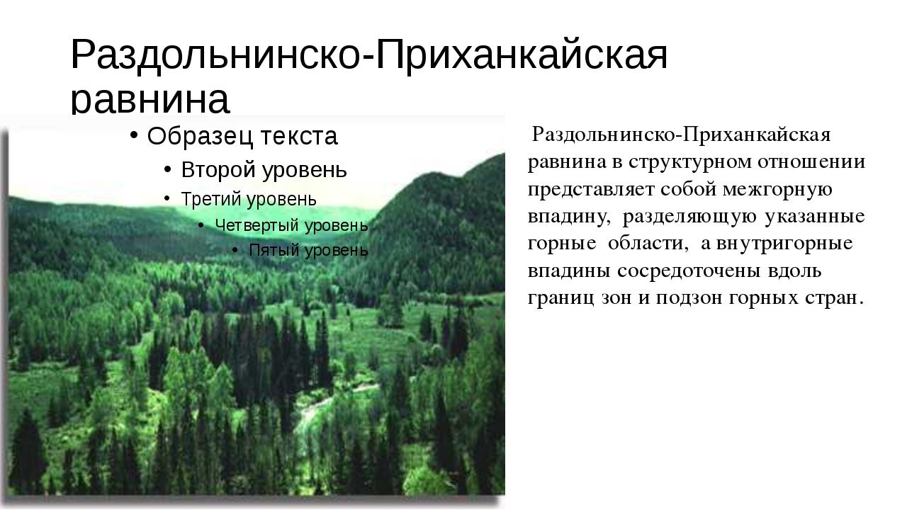 Раздольнинско-Приханкайская равнина Раздольнинско-Приханкайская равнина в ст...