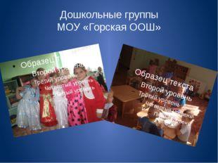 Дошкольные группы МОУ «Горская ООШ»