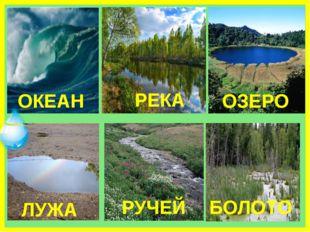 ОКЕАН РЕКА ОЗЕРО ЛУЖА БОЛОТО РУЧЕЙ