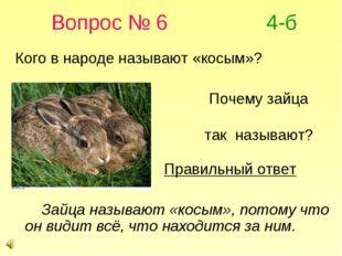 Вопрос № 6 4-б Кого в народе называют «косым»? Почему зайца так называют? Пр