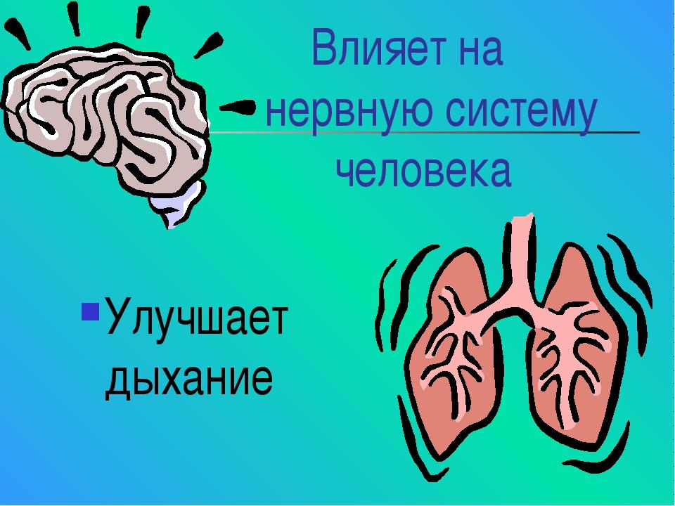 Влияет на нервную систему человека Улучшает дыхание