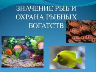 ЗНАЧЕНИЕ РЫБ И ОХРАНА РЫБНЫХ БОГАТСТВ http://i079.radikal.ru/0907/f6/0be4b3a5