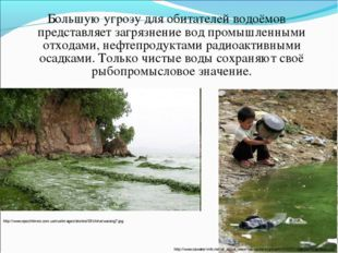 Большую угрозу для обитателей водоёмов представляет загрязнение вод промышлен