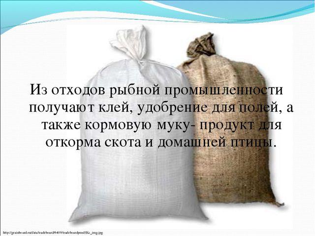 Из отходов рыбной промышленности получают клей, удобрение для полей, а также...