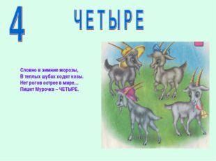 Словно в зимние морозы, В теплых шубах ходят козы. Нет рогов острее в мире… П