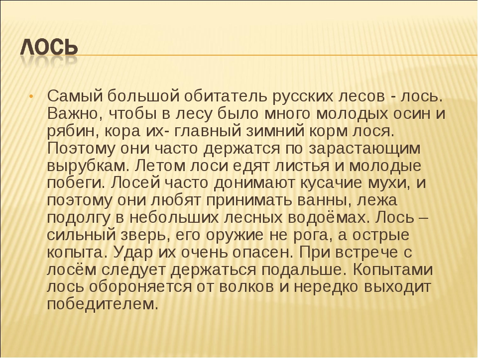 Самый большой обитатель русских лесов - лось. Важно, чтобы в лесу было много...
