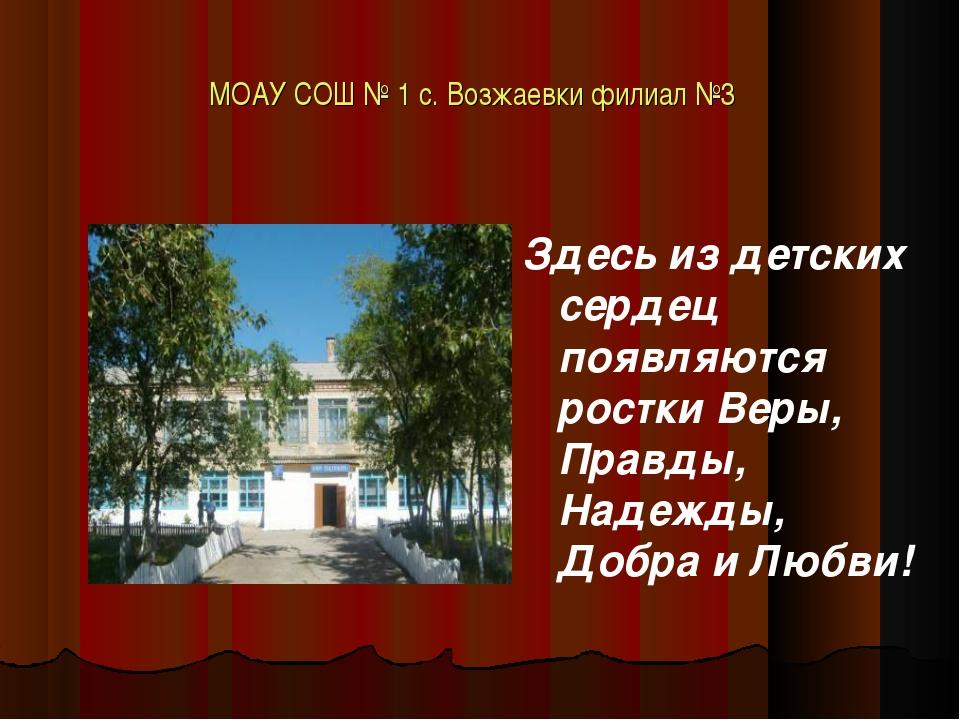 МОАУ СОШ № 1 с. Возжаевки филиал №3 Здесь из детских сердец появляются ростки...
