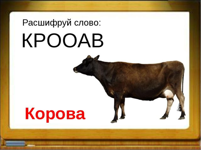 Расшифруй слово: КРООАВ Корова