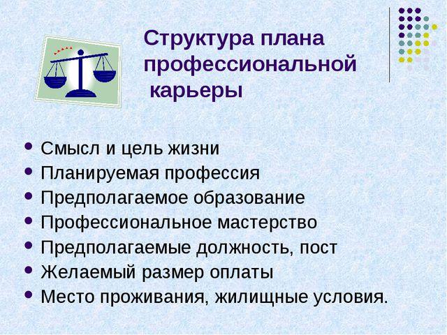 Структура плана профессиональной карьеры Смысл и цель жизни Планируемая профе...