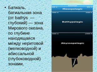 Батиаль, батиальная зона (от bathýs — глубокий) — зона Мирового океана, по гл