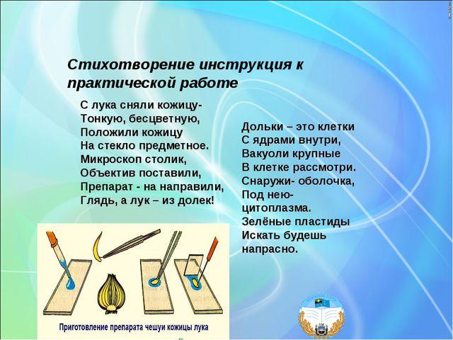 Стихотворение инструкция к практической работе С лука сняли кожицу- Тонкую,...