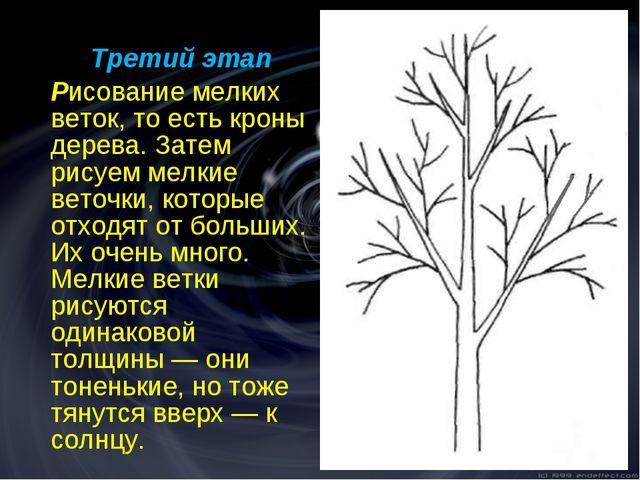 Третий этап Рисование мелких веток, то есть кроны дерева. Затем рисуем мел...