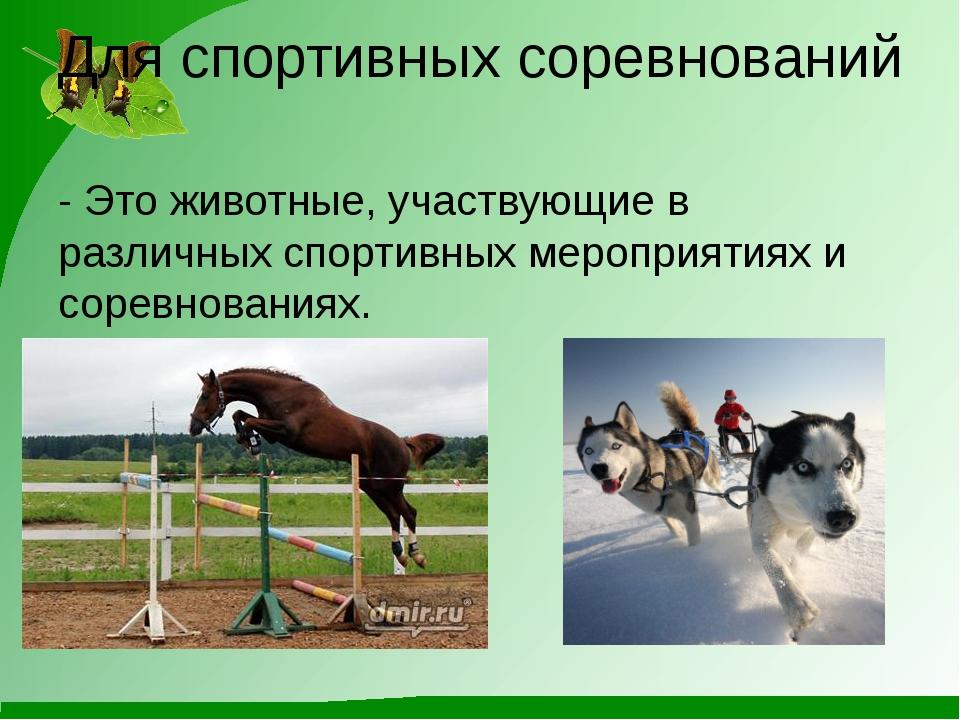 Для спортивных соревнований - Это животные, участвующие в различных спортивны...