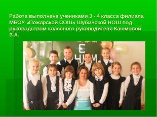Работа выполнена учениками 3 - 4 класса филиала МБОУ «Пожарской СОШ» Шубинско