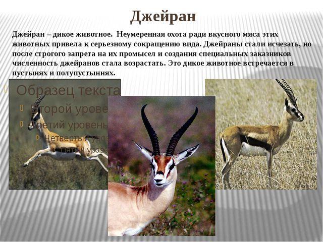 Джейран Джейран – дикое животное. Неумеренная охота ради вкусного мяса этих...