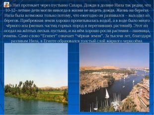 Река Нил протекает через пустыню Сахара. Дожди в долине Нила так редки, что 1